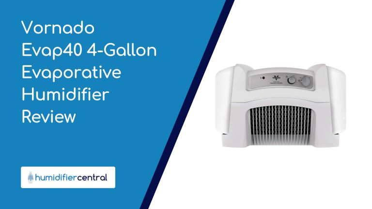 Vornado Evap40 4-Gallon Evaporative Humidifier Review