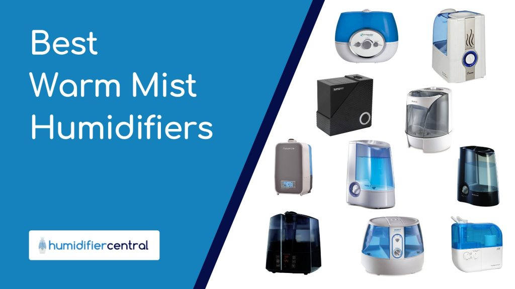 Best Warm Mist Humidifiers